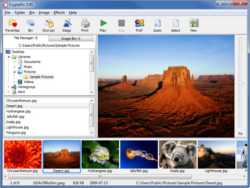 JPEG image file management, encryption, and steganography program for Windows